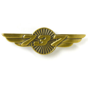 Pin de alas de Boeing 737